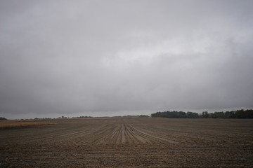 A harvested corn field on Gormong near Terre Haute