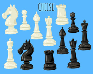 Set of chess pieces. Vector set of isolated objects on a background.