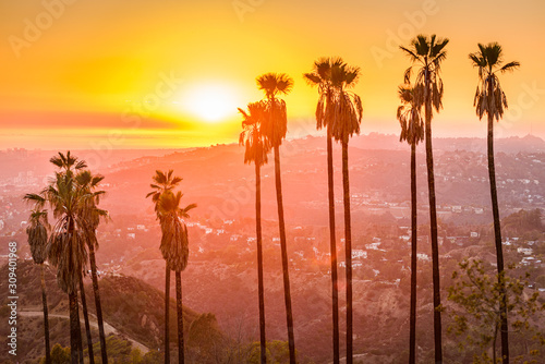 Fototapete Griffith Park, Los Angeles, California, USA