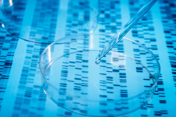 Symbol photo DNA research