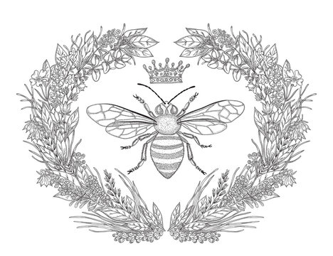 Design for t-shirts with image of wreath of flowers, honey bee and crown. Black and white vector illustration.