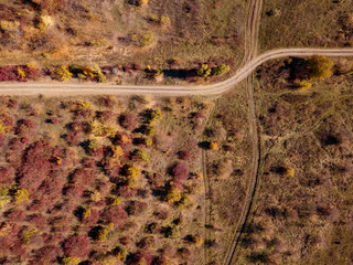 Top view to dirt road through autumn colors woodland. Aerial vie