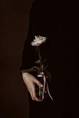 Hand holding a peony, on dark background