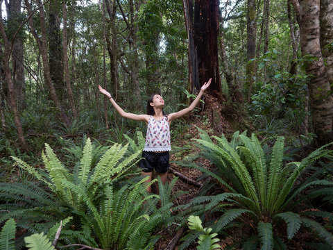 Walking through Mount Holdsworth nature reserve, New Zealand
