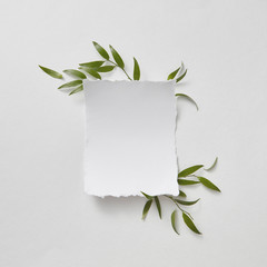 Natural composition of green branches and blank paper on gray paper background with copy space. Flat lay