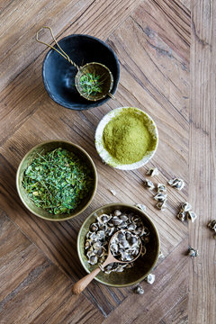 Superfood Moringa in various stages