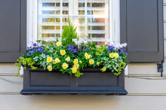 In a city of gardens, beautiful planter boxes are seen in the historic district of Charleston, South Carolina, a popular slow travel destination in the southern United States.