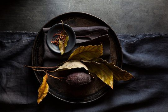 Plate with dried objects