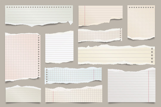 Colored ripped lined paper strips collection. Realistic paper scraps with torn edges. Sticky notes, shreds of notebook pages. Vector illustration.