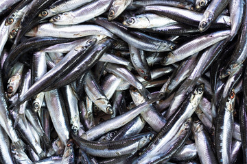 Image of heap of anchovies hunted on bench.