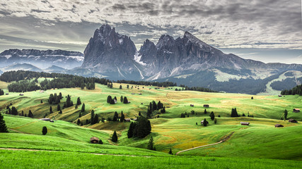 Wall Mural - Green hills in Alpe di Siusi at sunrise, Dolomites