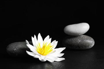 Garden Poster Lotus flower Stones and lotus flower on black table. Zen lifestyle