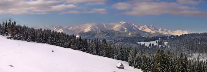Bukowina Tatrzańska - Zima - Panorama na Tatry - Polana Widokowa - fototapety na wymiar