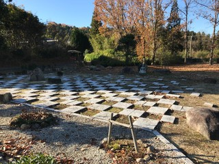 Autumn in the Park of Mosaic Design with Stone Panels
