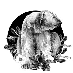 polar bear sitting full length and looking away on the background of a round composition of Magnolia flowers, sketch vector graphics monochrome illustration on a white background