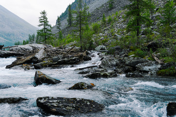 Tuinposter Bos rivier River with fast flowing water, mountain stream rocks. Travel to the mountain valley, water tourism