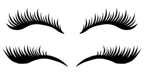 Eye lashes vector icon. Vector