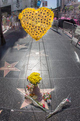 Michael Jackson's star on the Hollywood Walk