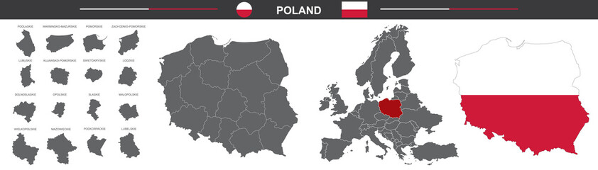 political vector map of Poland on white background Wall mural