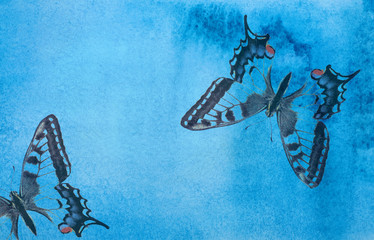 Papiers peints Papillons dans Grunge Abstract blue watercolor background. Blue abstract background. Wet watercolor paper. Beautiful machaon butterfly on a blue. Shades of the blue