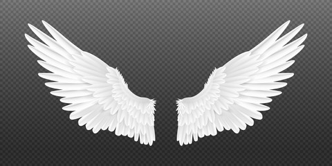 Realistic angel wings. White isolated pair of falcon wings, 3D bird wings design template. Vector concept white cute feathered wing animal on a transparent background Wall mural