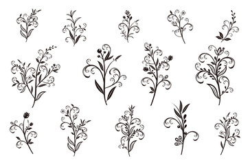 Beautiful hand drawn floral vector collection