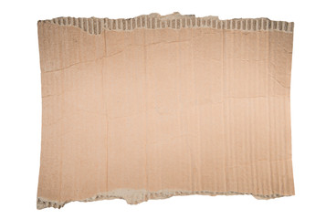 Cardboard torn edge. Piece of paperboard isolated