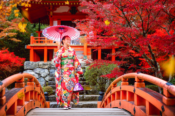Wall Mural - Japanese girl in kimono traditional dress walk in red bridge