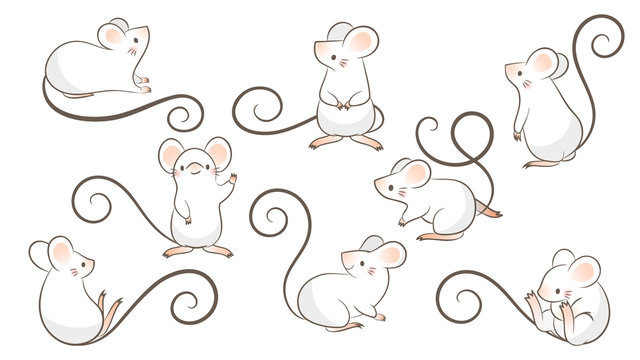 Set of hand drawn rats, mouse in different poses on white background. Vector illustration, cartoon doodle style.