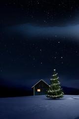 Wall Mural - Weihnachtlich beleuchtete Hütte in Kalter Winternacht mit Sternenhimmel und Christbaum