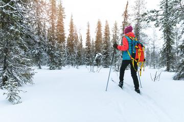 ski touring in the deep fresh snow, Yllas, Lapland, Finland