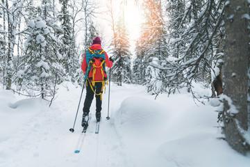 Fototapeta ski touring - woman with skis on a snowy winter forest trail. Yllas, Lapland, Finland obraz