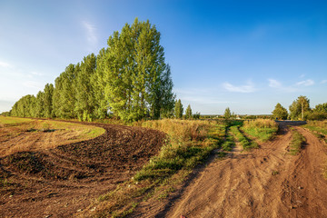 Fototapete - The country road along mown wheat field and forest belt in the background. Beauty nature, agriculture and seasonal harvest time. Scenic agricultural land.