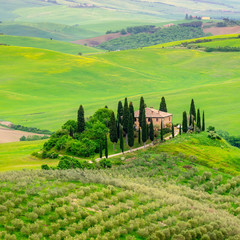 Wall Mural - Tuscany spring, Landscape, Italy, Europe
