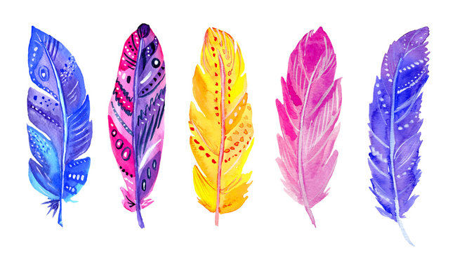 Watercolor purple, blue, pink and yellow feathers set  isolated on white background. Hand painted bohemian illustration.
