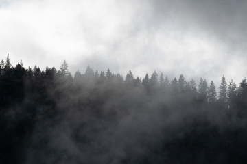 Fotobehang Zwart Misty mountains in Oregon
