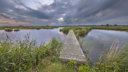 Wall Mural - Wooden footbridge in wetland