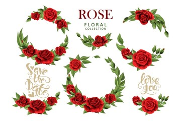 Red roses hand drawn illustration elements colored set isolated on white