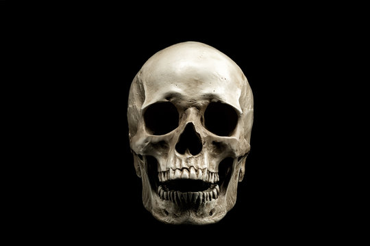 Front view of a human skull with open mouth isolated on black background.