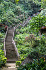 A stone steps rising up the hill in the tropical woods, Laos.