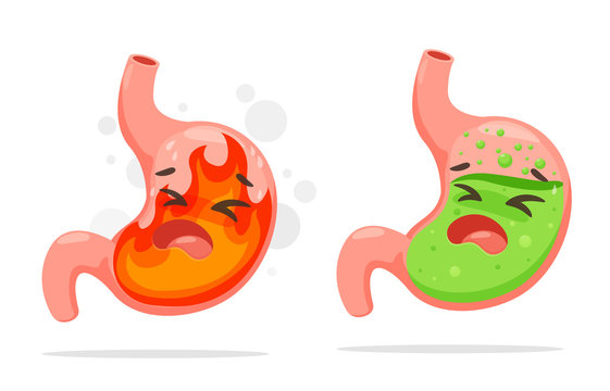 Cartoon stomach suffering from acid reflux. A stomach that burning like a fire From acid reflux.