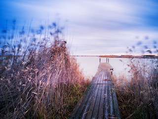 Jetty with reed on lake neusiedl in burgenland