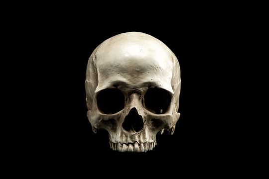 Frontview of natural human skull on isolated black background