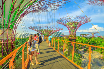 Singapore - April 29, 2018: asian tourist takes selfie with smart phone while walking on skybridge or OCBC Skyway of Supertree Grove in Gardens by the Bay, Marina Bay in Singapore.