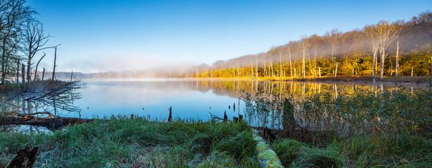Herbst im Müritz Nationalpark, stiller kleiner See mit Morgennebel umgeben von buntem Wald Wall mural