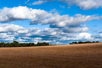 Paisaje, tierra y cielo, campo sembrado con nubes inmensas.