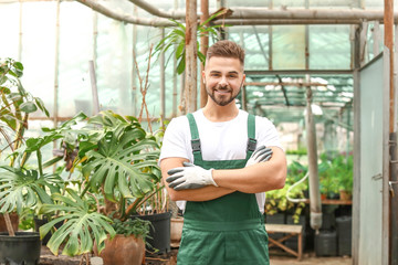 Handsome male gardener in greenhouse