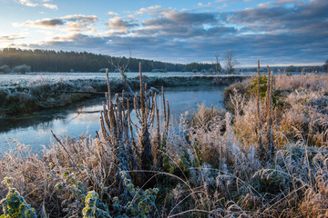 Foto op Plexiglas Cappuccino frosty morning on the river