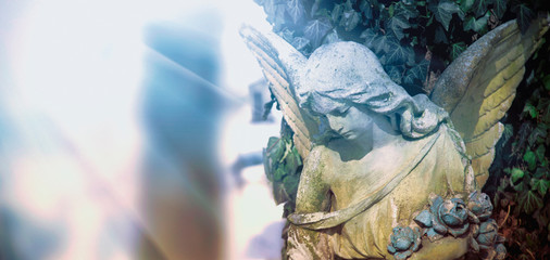 Fotomurales - Iimage of an angel on a cemetery in sunlight. Ancient statue.