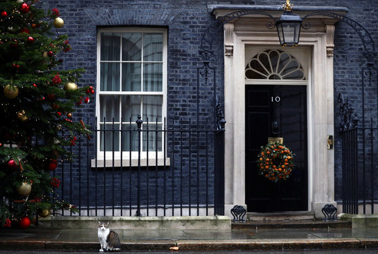 Larry the cat is seen at Downing Street in London